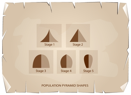 hape: Population and Demography, Illustration Set of 5 Types of Population Pyramids Chart or Age Structure Graph on Old Antique Vintage Grunge Paper Texture Background.