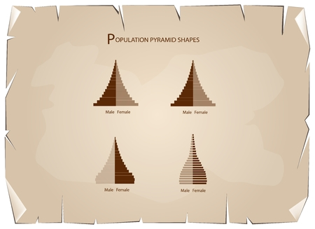 Population and Demography, Illustration of 4 Types of Population Pyramids Chart or Age Structure Graph on Old Antique Vintage Grunge Paper Texture Background. Illustration