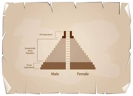 pyramidal: Population and Demography, Illustration of Detail of Population Pyramids Chart or Age Structure Graph on Old Antique Vintage Grunge Paper Texture Background.