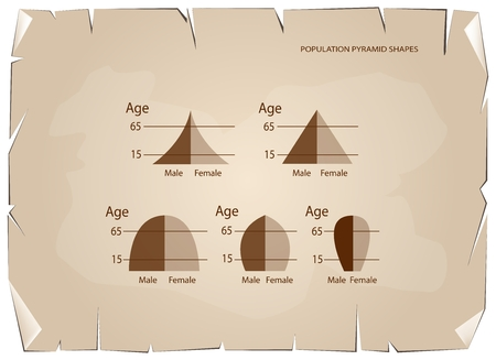 demography: Population and Demography, Illustration Set of 5 Types of Population Pyramids Chart or Age Structure Graph on Old Antique Vintage Grunge Paper Texture Background.
