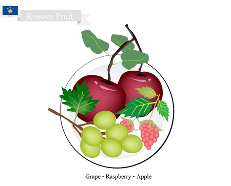 Kosovo Fruit, Ripe and Sweet Apple, Grapes, and Raspberry. The Most Popular Fruits of Kosovo.