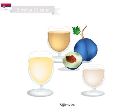 Serbische Küche, Sljivovica oder traditionelle alkoholische Pflaume Brandy. Eines der beliebtesten Drink in Serbien. Standard-Bild - 81572582