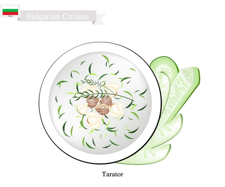 Bulgarian Cuisine, Taratoror or Traditional Sour Cold Milk Soup Made of Yogurt, Cucumber, Dill, Walnuts and Garlic. One of The Most Famous Dish in Bulgaria. Иллюстрация