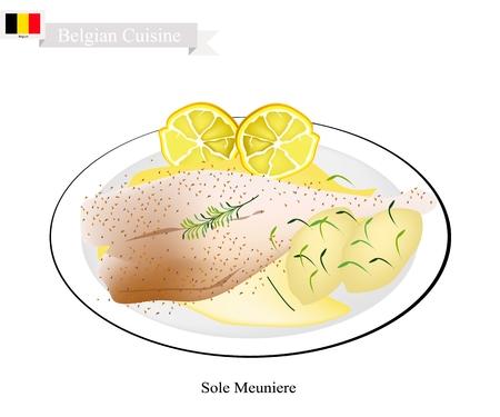 Cocina belga, Ilustración de Sole Meuniere o filete de pescado único tradicional frito en mantequilla y servido con salsa de mantequilla, perejil y limón. Uno de los platos más famosos de Bélgica. Ilustración de vector