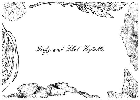 Groentesalade, Illustratiekader van Hand Getrokken Schets Heerlijke Verse Groene Blad en Saladegroente die op Witte Achtergrond wordt geïsoleerd.