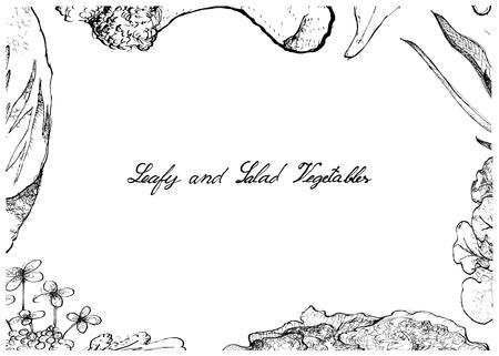 Groentesalade, Illustratiekader van Hand Getrokken Schets Heerlijke Verse Groene Blad en Saladegroente die op Witte Achtergrond wordt geïsoleerd. Stockfoto - 89107788