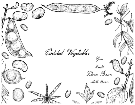 Vegetable, Illustration Frame of Hand Drawn Sketch Fresh Podded Vegetables Isolated on White Background. Çizim