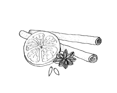 Illustration Hand Drawn Sketch of Dried Star Anise and Cinnamon Sticks with Dried Orange for Christmas Decoration.