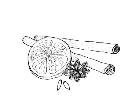 Schizzo disegnato a mano dell'illustrazione dell'anice stellato e dei bastoncini di cannella secchi con l'arancia secca per la decorazione di Natale. Vettoriali