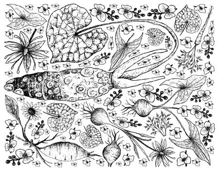 야채 패턴입니다.