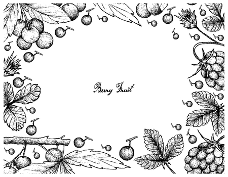 Berry Fruit, Illustration Frame of Hand Drawn Sketch of Fresh Arctic Bramble. Illustration