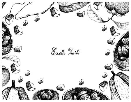 Vegetable and Fruit Illustration Frame of Hand Drawn Sketch Isolated on White Background. Illustration