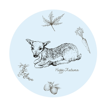 Autumn Animal, Illustration Hand Drawn of Fawn Deer with Carrot, Apples, Berries and Maple Leaf. Symbolic Animal to Show The Signs of Autumn Season. Stock Vector - 106181773