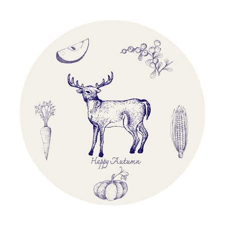 Autumn Animal, Illustration Hand Drawn of Whitetail or Virginia Deer with Berries, Apple, Corn, Pumpkin and Carrot. Symbolic Animal to Show The Signs of Autumn Season.