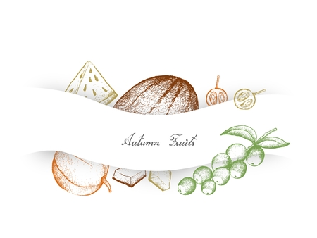 Autumn Fruits, Illustration Hand Drawn Sketch of Camu Camu or Cacari, Muskmelon, Cantaloupe, Mushmelon, Rockmelon, Sweet Melon or Spanspek and Watermelon or Citrullus Lanatus.