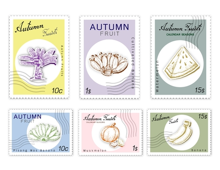 Autumn Fruits, Post Stamps Set of Hand Drawn Sketch Ensete Banana, Cultivated Banana, Pisang Mas, Muskmelon and Watermelon in Trendy Origami Deep Paper Art Carving Style. Illustration