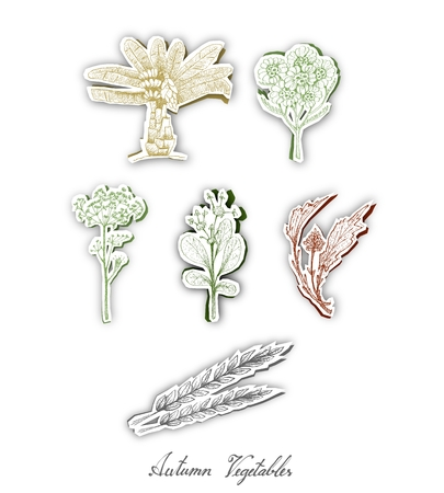 Autumn Vegetables, Set of Hand Drawn Sketch of Assorted Vegetables are Harvested in Autumn. Trendy Origami Deep Paper Art Carving Style. Illustration