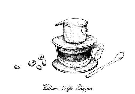 Illustration Hand Drawn Sketch of Coffee Beans with Vietnam Coffee Dripper, A Vietnamese Traditional Coffeemaker.
