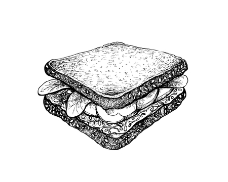 Illustration Hand Drawn Sketch of Delicious Homemade Freshly Healthy Whole Grain Bread Sandwich with Avocado, Cucumber, Lettuce and Healthy Vegetables Isolated on White Background.