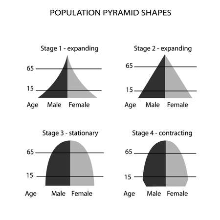 Population and Demography, Illustration Set of 4 Types of Population Pyramids Chart or Age Structure Graph Isolated on White Background.