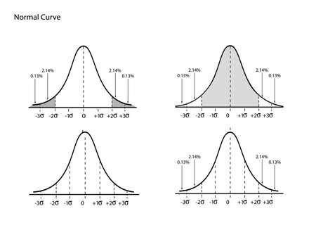 Business and Marketing Concepts, Illustration Set of Gaussian Bell Curve or Normal Distribution Curve Isolated on White Background.