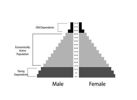 Population and Demography, Illustration of Detail of Population Pyramids Chart or Age Structure Graph Isolated on White Background.