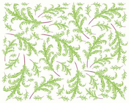 Illustration Vector of Phlebodium Aureum or Golden Serpent Fern Leaves Background.