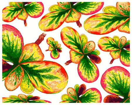 Ecological Concept, Illustration Background of Beautiful Green and Yellow Spot Croton Plants or Codiaeum Variegatium Plants For Garden Decor. Vektorové ilustrace
