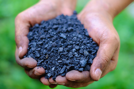 Selective focus of fine coal (sizing of 0-5 mm) in workers hands against the blurred green natural background, energy concept