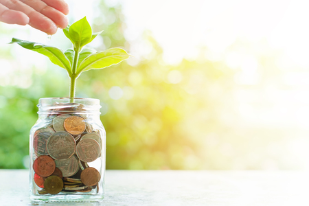 Hand watering the plant growing from coins in the glass jar on blurred green natural background with sun light effect and copy space for business and financial growth concept Imagens