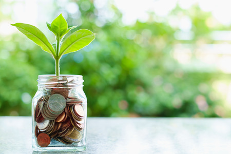 Plant growing from coins in the glass jar on blurred green natural background with copy space for business and financial growth concept Imagens