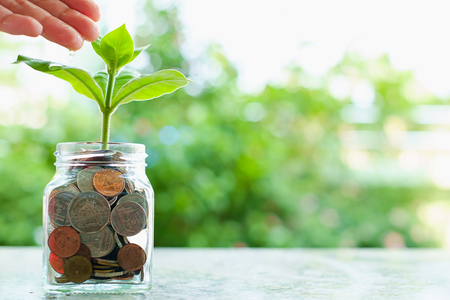 Hand watering the plant growing from coins in the glass jar on blurred green natural background with copy space for business and financial growth concept