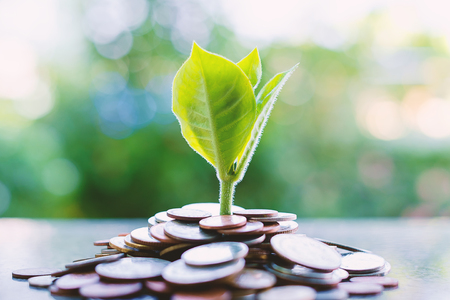 Plant growing from piles of money on blurred green natural background for business and financial growth concept Stock Photo