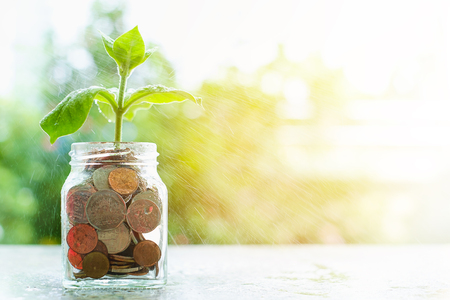 Water spraying the plant growing from coins in the glass jar on blurred green natural background with sun light effect and copy space for investment, business and financial growth concept