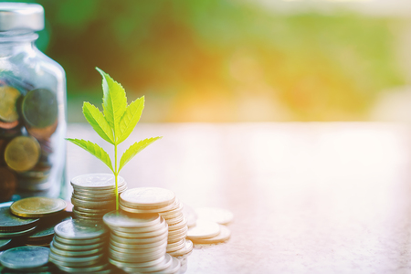 Plant growing from coins outside the glass jar on blurred green natural background with copy space and sunlight effect for investment, business and financial growth concept Stock Photo