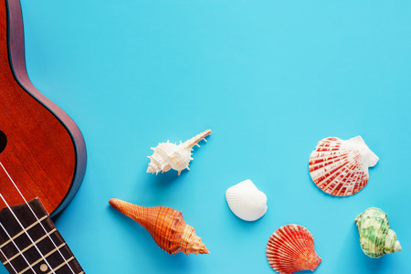 Ukulele and sea shells on blue background for musical instrument, hobbies, travel and relaxation concept