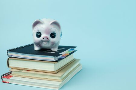 Saving piggy bank on books against blue background for save money and education financial concept Imagens