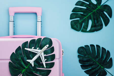 White airplane model on pink luggage with palm leaves on blue pastel colored background travelling and summer beach concept Imagens - 151372184