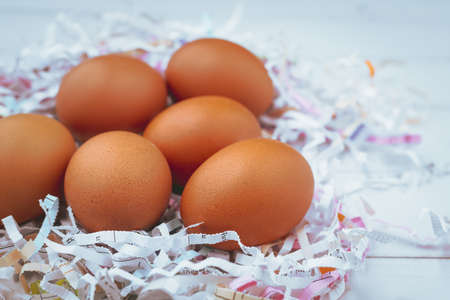 Eggs in the shredded paper on white wooden background for healthy food concept Imagens
