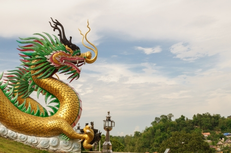 Chinese Golden dragon close-up, Thailand photo