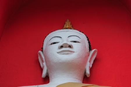 Buddha s head  photo
