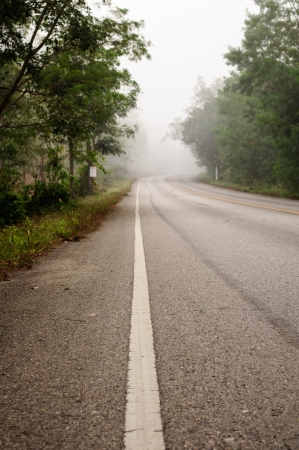 The morning road with foggy photo