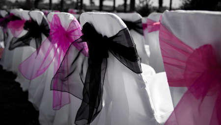 Chair covers Pink and black