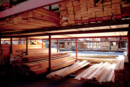 Cut timber stacked,