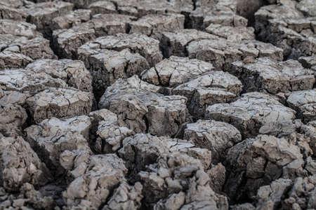 dried cracked mud