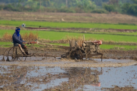 local farmer with wheel machine for rice planting