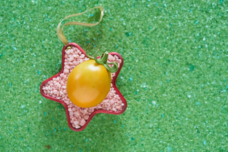 fresh tomato potash fertilizer in red star shape on green magnesium fertilizer background.                               Stock Photo