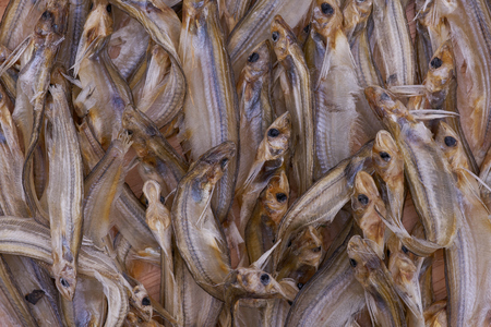 close up salted dried fish .