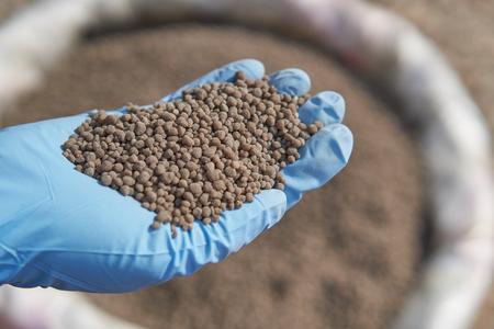 18-46-0, meststoffen op basis van diammoniumfosfaat (DAP) in onderzoekshand. Ze gebruikten blauwe rubberen handschoenen om onderzoek te doen naar het beheer van voedingsstoffen en kunstmest.