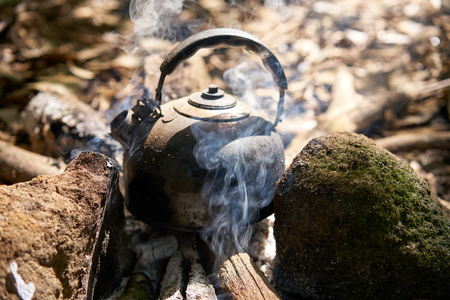Stainless steel kettle boiling on bonfire in forest.